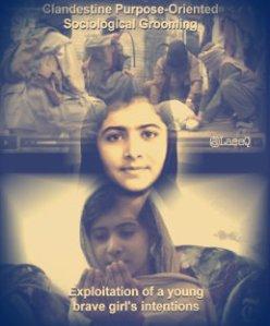 Icon_Malala-258x320